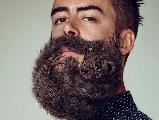Científicos indican que la barba tiene tantas  bacterias como un hinodoro