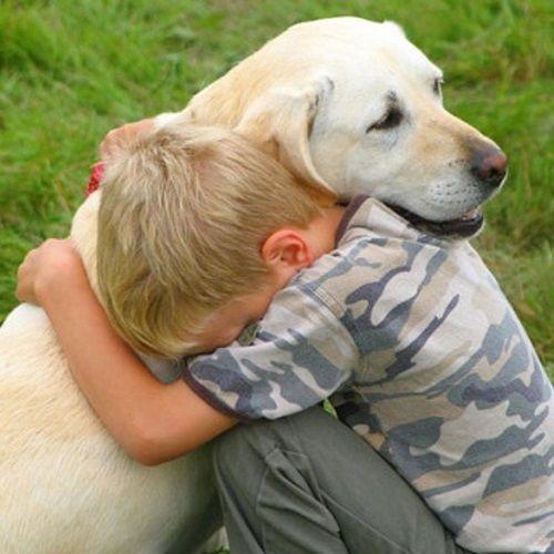 Un estudio demuestra que los perros actúan rápido para ofrecer consuelo a sus dueños cuando están tristes