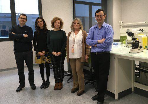 Dos algoritmos matemáticos para mejorar la detección precoz del deterioro cognitivo en las farmacias