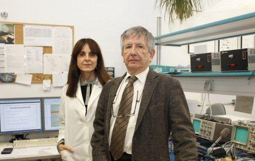 La liberación de BDNF mejora déficits de memoria en un modelo experimental en ratón de la enfermedad de Alzheimer