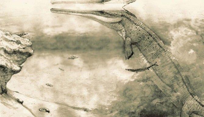 El descubrimiento del cocodrilo jurásico arroja luz sobre el árbol genealógico de los reptiles