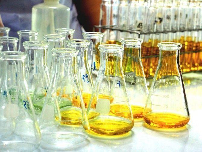 Diseñan un método que detecta sustancias producidas por hongos en aceites vegetales para mejorar la seguridad alimentaria
