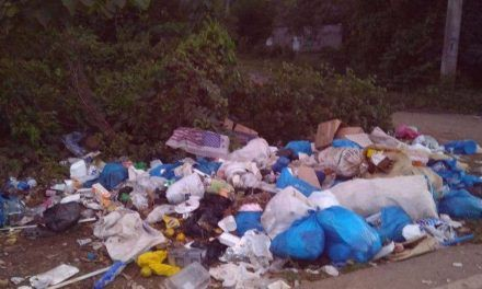Basura y animales muertos contaminan el río Palmarejo