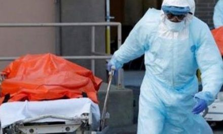 Registran 193 muertes en los 28 días que lleva el mes de enero