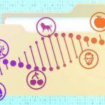 ¿De los soportes digitales convencionales al ADN para almacenar datos?