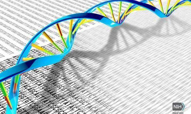 Terapia genética contra la inmunodeficiencia combinada grave por déficit de adenosina desaminasa