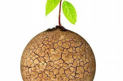 Reflexiones en torno a la lucha contra la desertificación y la sequía