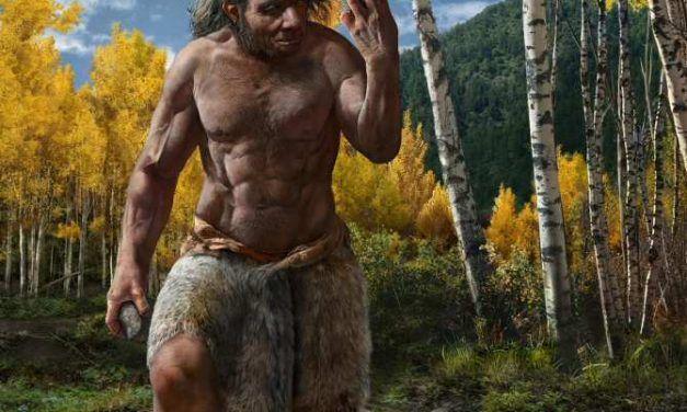 El Homo longi, ¿nuestro pariente evolutivo más cercano en vez del neandertal?