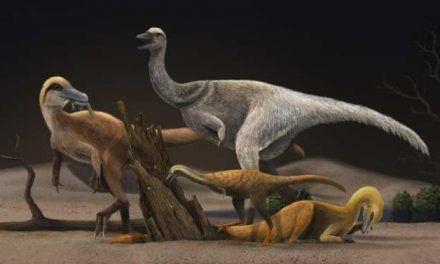 La adaptación de los dinosaurios que se volvieron muy pequeños