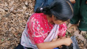 Mujeres indígenas de Ocosingo frente a la migración, salir o enfrentar a la violencia