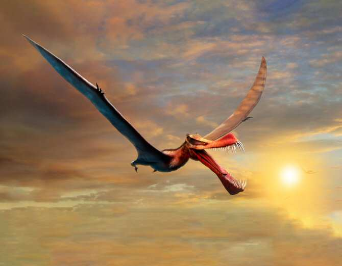 La bestia parecida a un dragón mitológico que vivió en Australia