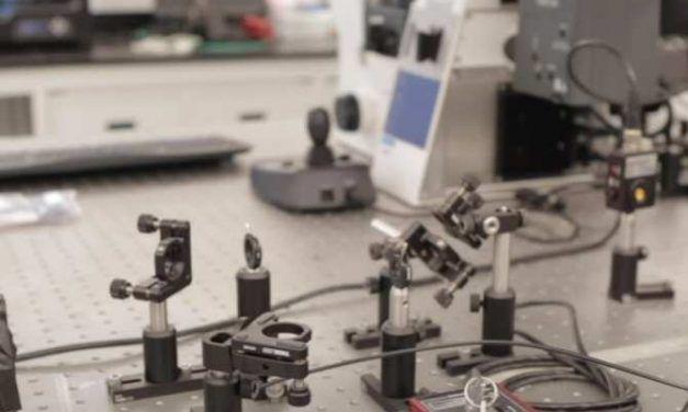 Imprimir con tintas que contienen neuronas vivas
